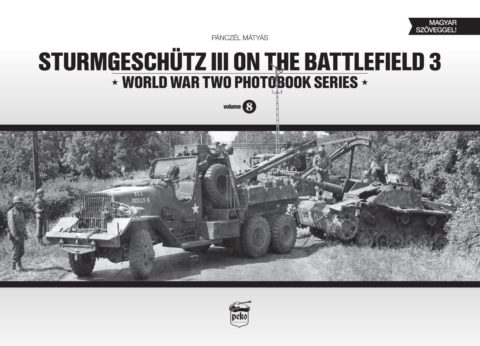 sturmgeschutz-iii-on-the-battlefield-3